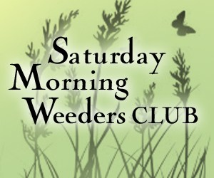 Weeders Club AD