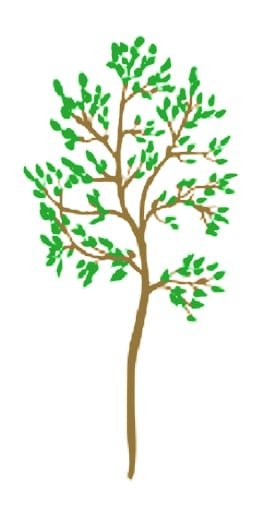 Tree Planting - illus